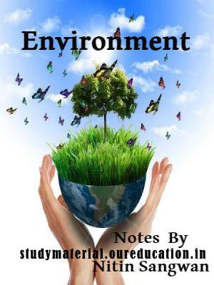 Environment Notes by Nitin Sangwan